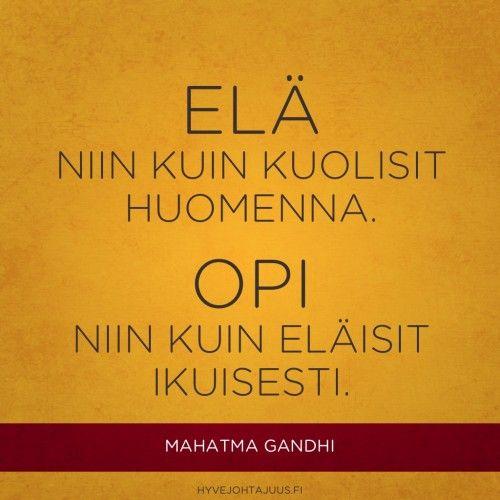 Elä niin kuin kuolisit huomenna. Opi niin kuin eläisit ikuisesti. — Mahatma Gandhi