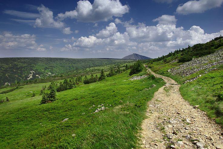 Ścieżka z Krakonoša do Luční boudy, Karkonosze