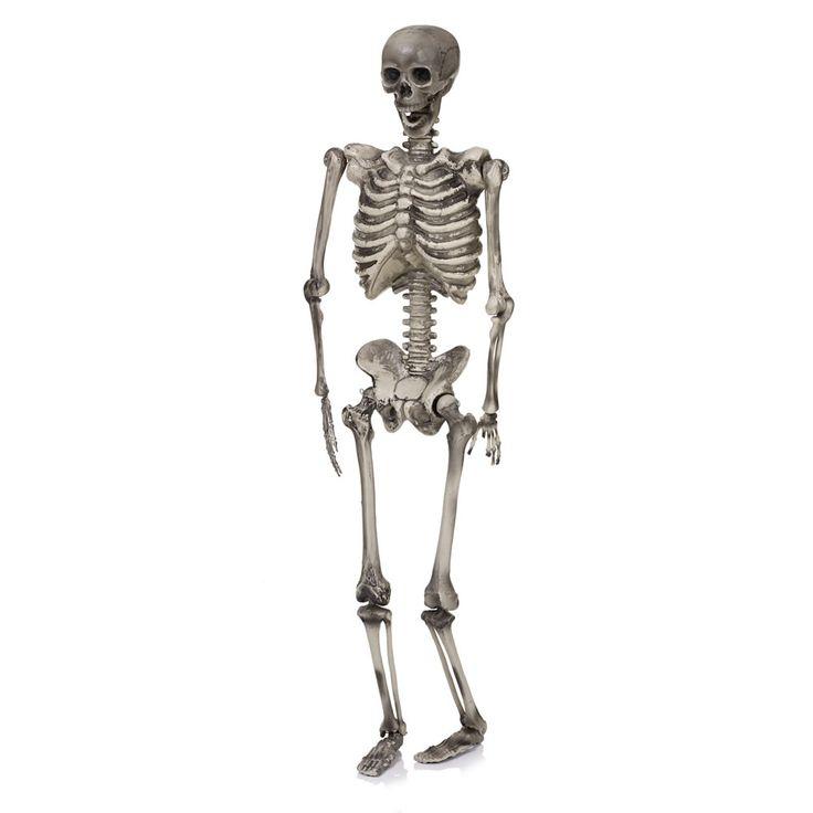 hanging skeleton 5ft happy halloweenhalloween partyhalloween decorationsskeleton - Halloween Decorations Skeleton
