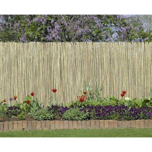 1000 Images About Backyard Chain Link Ideas On Pinterest