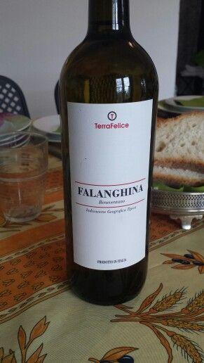 Falanghina  Terra Felice.