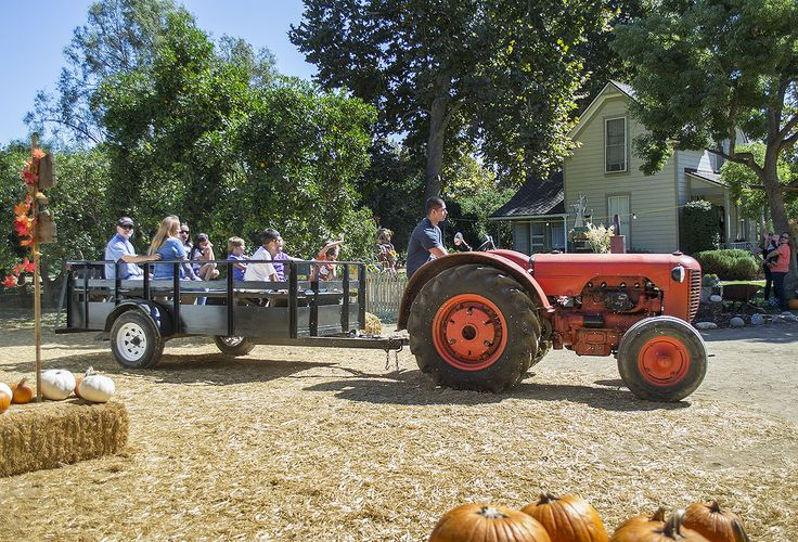 For over 24 years, Heritage Foundation has been host to a Pumpkin Patch located in La Verne, California. This is held just over 2 miles from Santiago's Casitas La Verne Mobilehome Estates.