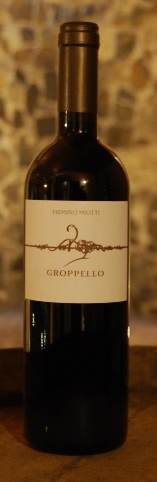 Groppello by Firmino Miotti...rare wine to try from North East of Italy!    www.bistrotdevenise.com