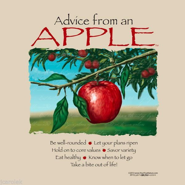 Advice from an Apple T-shirt Earth Sun Moon Fruit Nature XL New with Tags