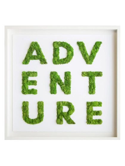 Adventure preserved moss art by Oliver Gal at Gilt