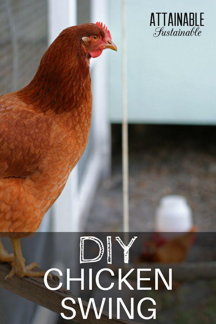 627 best backyard chickens images on pinterest backyard