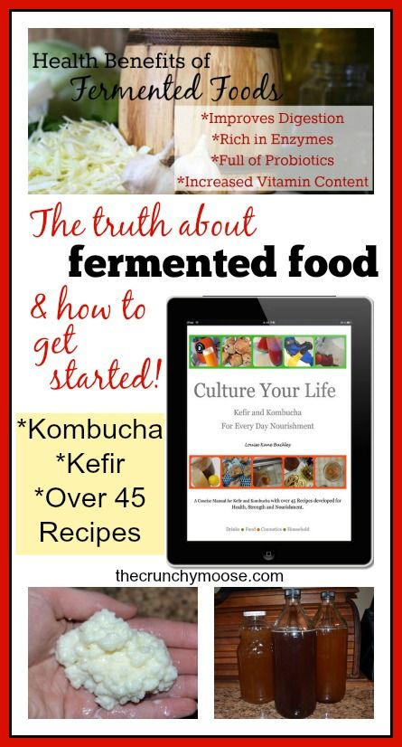 The truth about fermented food & how to get started - thecrunchymoose.com