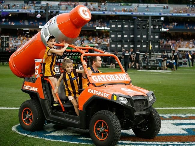 """AFL grand final 2015: Best pictures from Hawthorn celebrations - Brian Lake: """"It's probably not going to sink in until I retire and end up a fat, old man"""