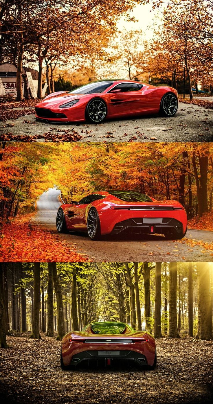 Aston Martin & Fall in the Northeast . . . Perfect combination! | Whether you're interested in restoring an old classic car or you just need to get your family's reliable transportation looking good after an accident, B & B Collision Corp in Royal Oak, MI is the company for you! Call (248) 543-2929 or visit our website www.bandbcollision.com for more information!