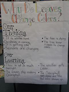 This concept of 'our thinking' and 'our learning' can be used for any age group