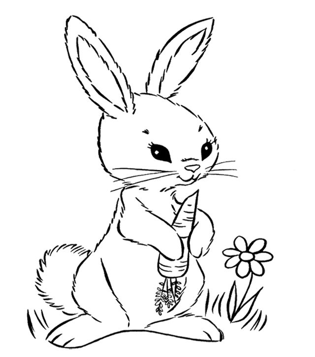 Bunny Holding A Carrot Coloring Page | Bunny coloring ...