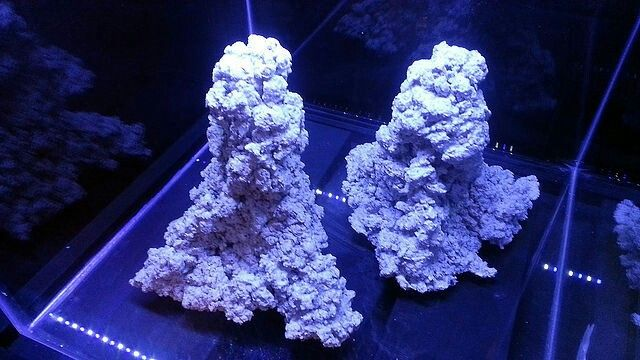 Twin peaks aquascape rock sculptutes.