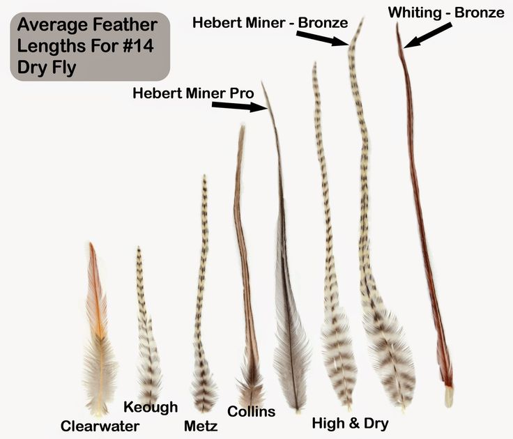 Fly Fish Food -- Fly Tying and Fly Fishing : Fly Tying Material Review