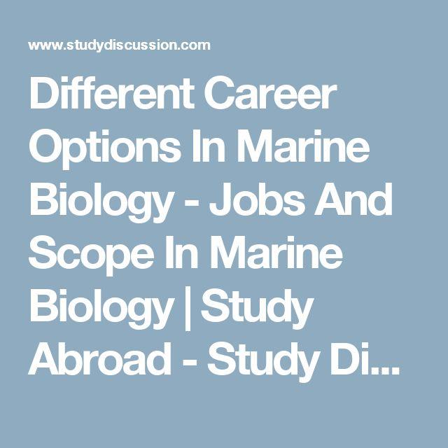The 25+ best Marine biology careers ideas on Pinterest Shark - marine biologist job description