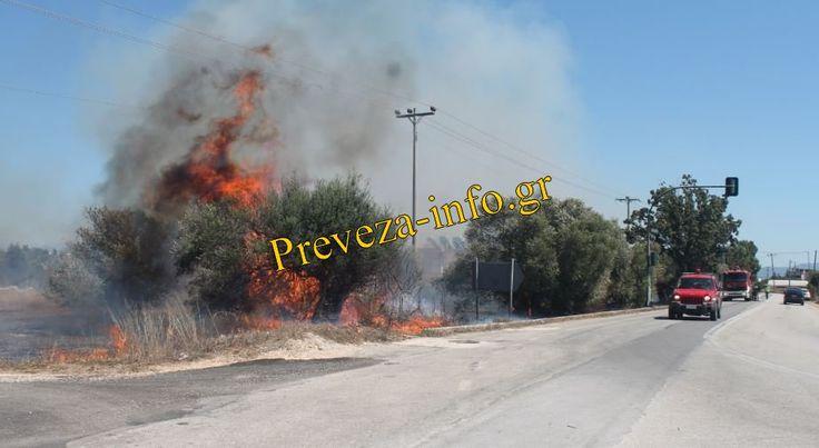 Πρέβεζα : Σβήστηκε η πυρκαγια στην Πρέβεζα[Photos]