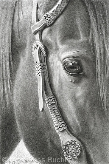 "Cowboys' Pick by Mary Ross Buchholz Graphite & Charcoal ~ 9"" x 6"""