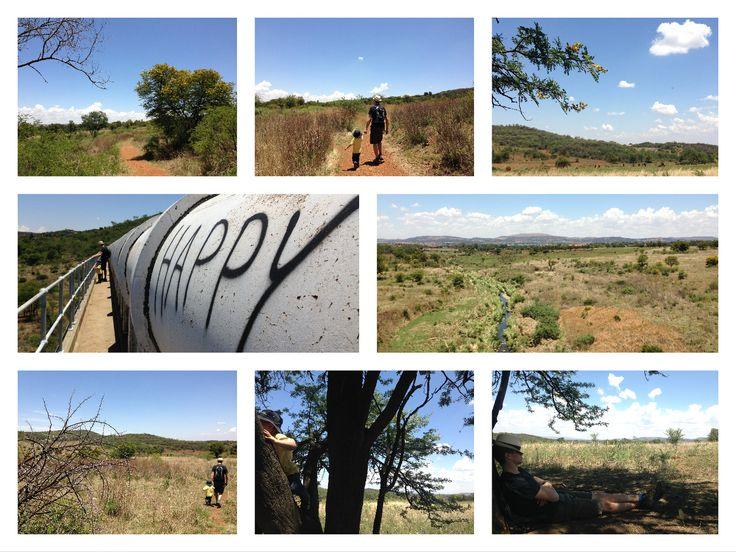 Klipriviersberg Nature Reserve, Gauteng, South Africa