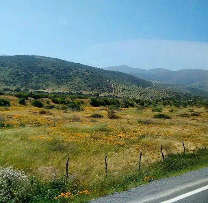 Camino a Salamanca, Chile