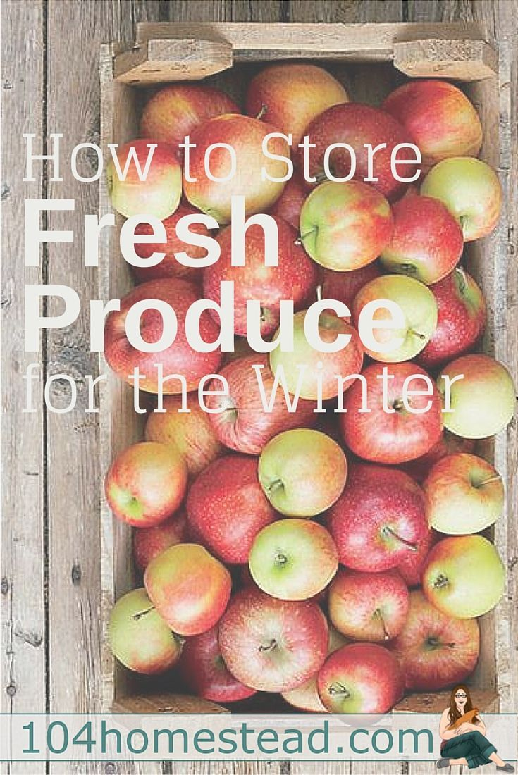 Preserve your produce for the long winter ahead with the help of 104 Homestead. Their guide features it all, from potatoes and beets to cabbage and turnips.