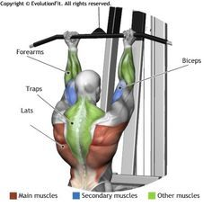 LATS - UNDERHAND CABLE PULLDOWNS