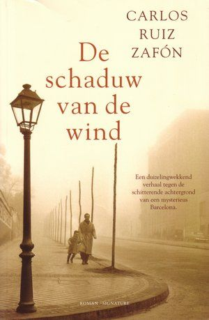 De schaduw van de wind
