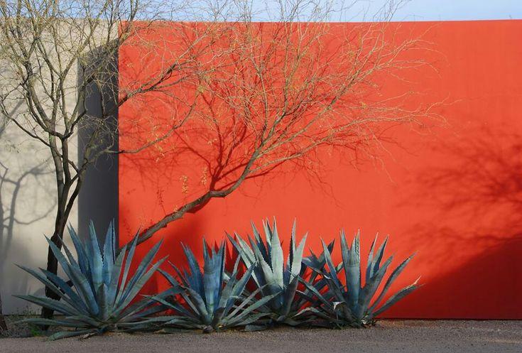 Muros de colores