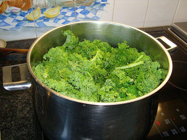 Krulkool, kale of boerenkool diepvriezen, Recepten - Diepvriezen, confituur en bewaren, Gette.org