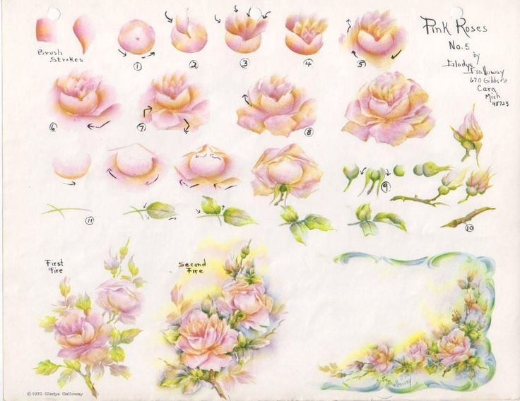 Gladys Galloway China Painting Study No 5 Pink Roses Pattern Instructions | eBay