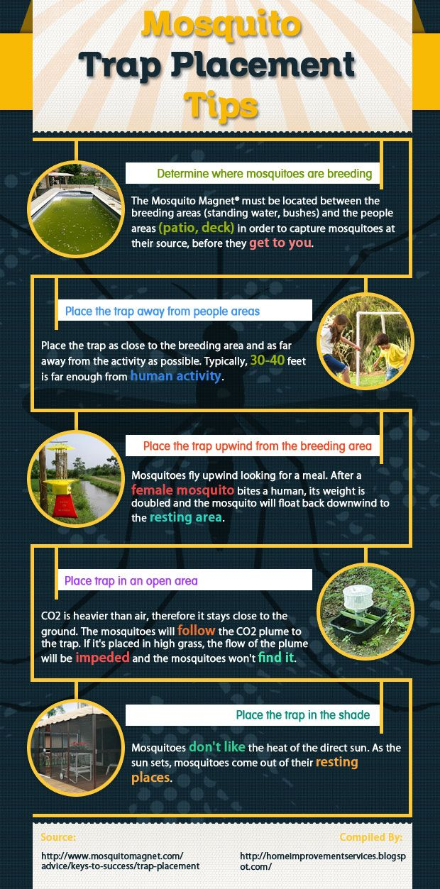 Mosquito Trap Placement Tips