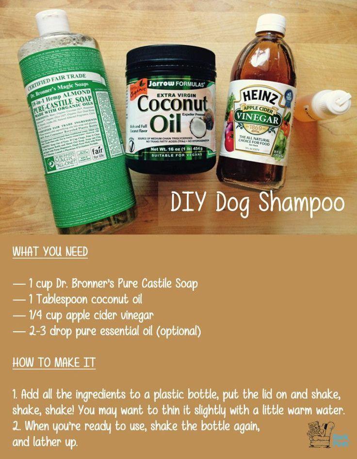 Best 25+ Homemade Flea Shampoo Ideas On Pinterest | Flea Shampoo within Homemade Flea Dip For Dogs 3652