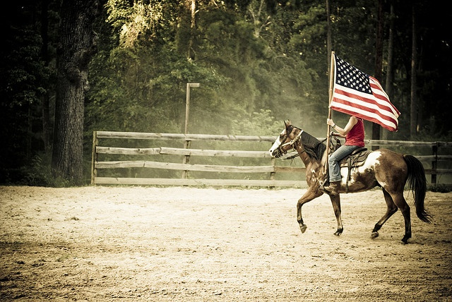 17 Best Images About Flag On Pinterest Headstall Rodeo