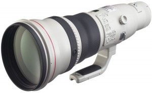 Click http://www.videonamics.com/lenses/canon-ef-800mm-review/ for more reviews, product features, pricing and description of the Canon EF 800mm f/5.6L IS USM Super Telephoto Lens for Canon Digital SLR Cameras.