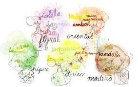 La clasificación de familias olfativas