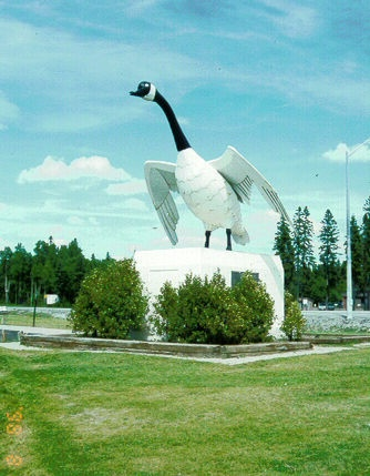 For some reason, this was my favourite place as a kid - Wawa, Ontario and the Goose!