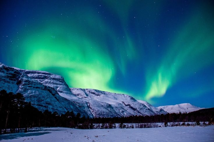 The Northern Lights Tromso:  The experience of a lifetime.