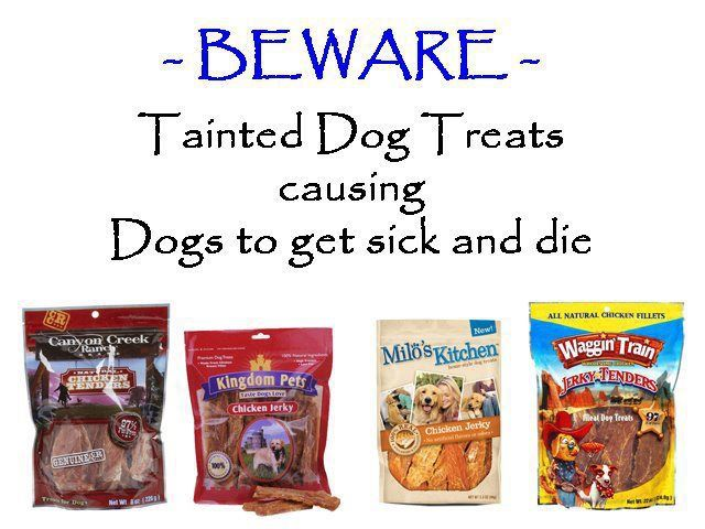 Dog Food Causing Death