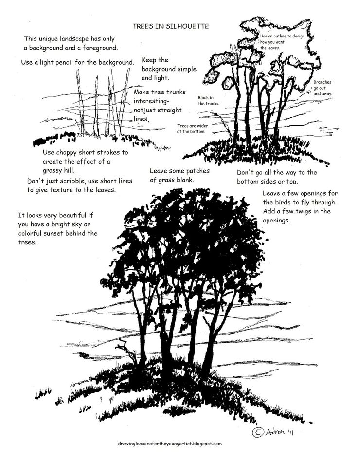 How to Draw Worksheets for The Young Artist: Printable How to draw a Tree in Silhouette Worksheet