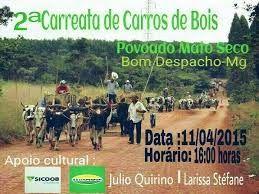 Festas de Carros de Boi: Carreata de Carros de Boi em Bom Despacho - MG