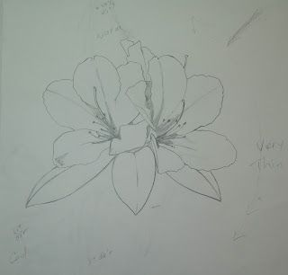 Studio at the Farm: HAH!!! Another Process ... Rhododendron
