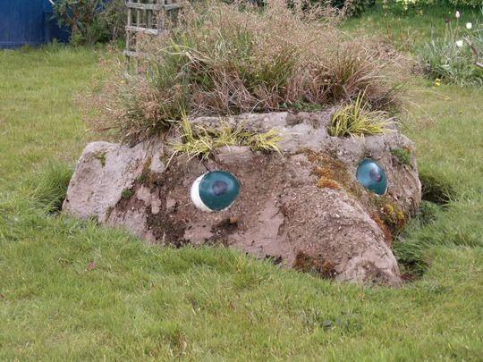 funky garden ideas : Humph has matured
