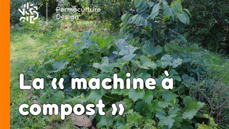 Intéressante dans un design de permaculture pour l'apport en fertilité, la « machine à compost » valorisera efficacement vos déchets organiques et vos eaux g...