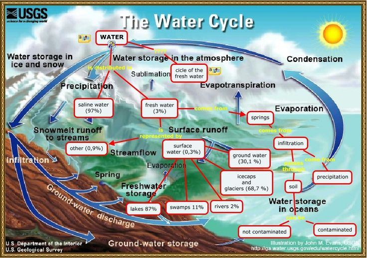 15 best the water cycle images on pinterest water cycle teaching a path of learning the water cycle ccuart Choice Image