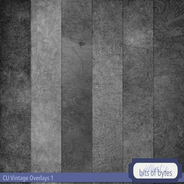 Vintage Overlays 1 By Jilbert S Bits Of Bytes Digital Scrapbooking Paper Making Tools In 2020 Photo To Watercolor Vintage Overlays