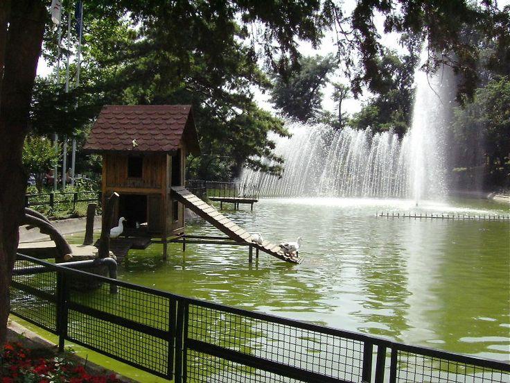Yıldız Parkı: Beloved Istanbul, Istanbul Un Romantik, Istanbul Ve, Dear Listanbul, Istanbullar In En, I Stanbul, Alan Yıldız, Yıldız Parkı, Parkı Resimleri