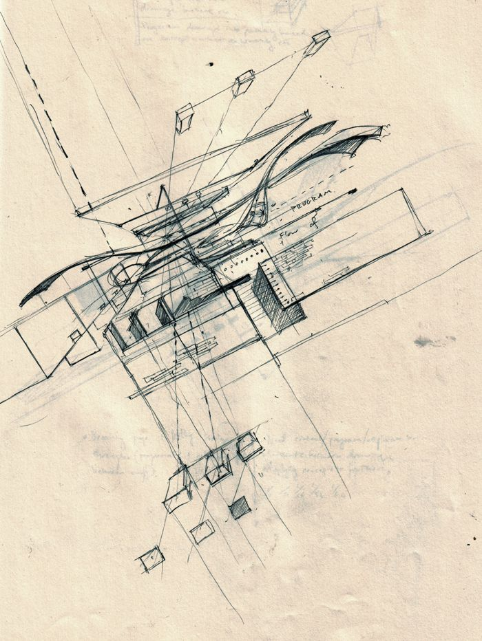 X Ray Line Drawing : Best images about sketches on pinterest architects