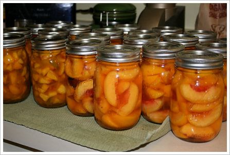 Canned Peaches-in a light syrup of 1 C sugar to 1 qt water, heated until the sugar is dissolved. Can add a vanilla bean, cinnamon stick, cloves to the syrup,  Peel, pit & slice peaches, load them into the jar packing tightly then ladle in the syrup to 1/2″ from the top of the jar. Add a lid and ring and process for 10 minutes in a water bath.