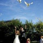 Robe de mariée digaméSi - Mariage - Colombes blanches - Oiseau