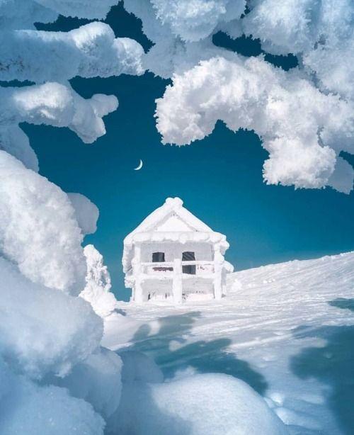 Do you like snowy weather? Finland  by @merveceranphoto...