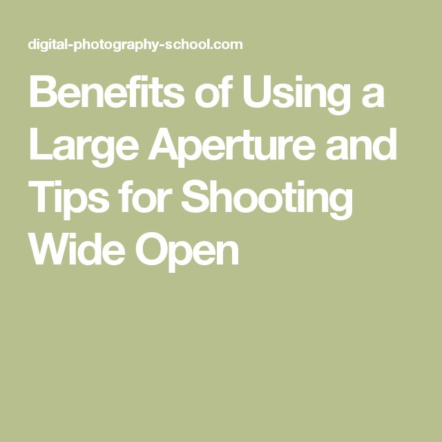 Spectacular Benefits of Using a Large Aperture and Tips for Shooting Wide Open