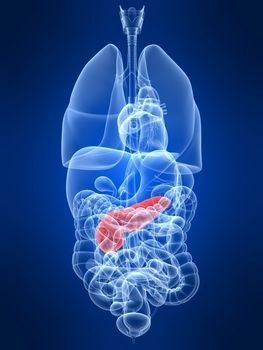 Pancreatic Cysts: Natural Health, Pancreatic Cysts, Chronic Pancreatitis, Articles, Natural Medicine, Pancreatic Health, Gallstone, Natural Remedies